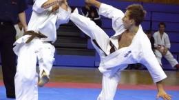 campionatul-european-de-karate-kyokushinkai-gazduit-la-sibiu-33335