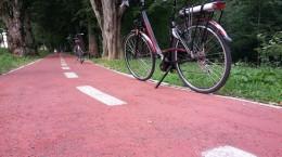 reprezentantii-primariei-vin-in-inspectie-pe-biciclete-electrice-de-5-000-de-lei-bucata-33340