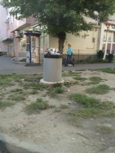 cosuri gunoi resturi menajere_foto primaria Sibiu (5)