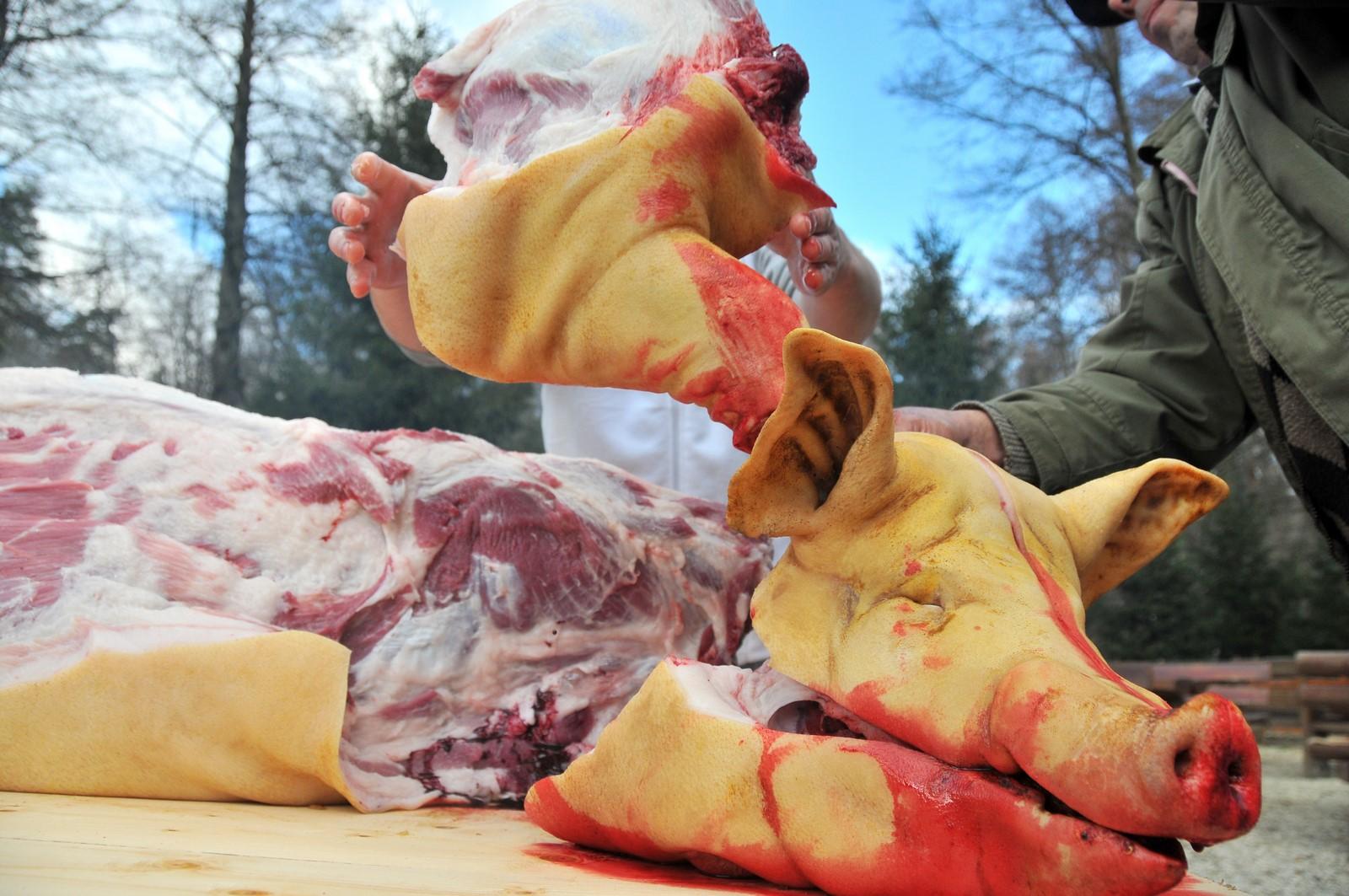 ignat taiere porc craciun traditii (11) (Copy)