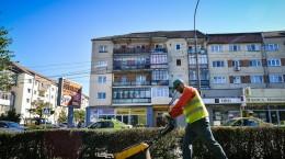 vecinatate activa_curatenie cartier strand (4)