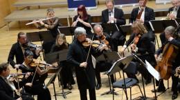 Johann Strauss Ensemble Sibiu 2014 IV