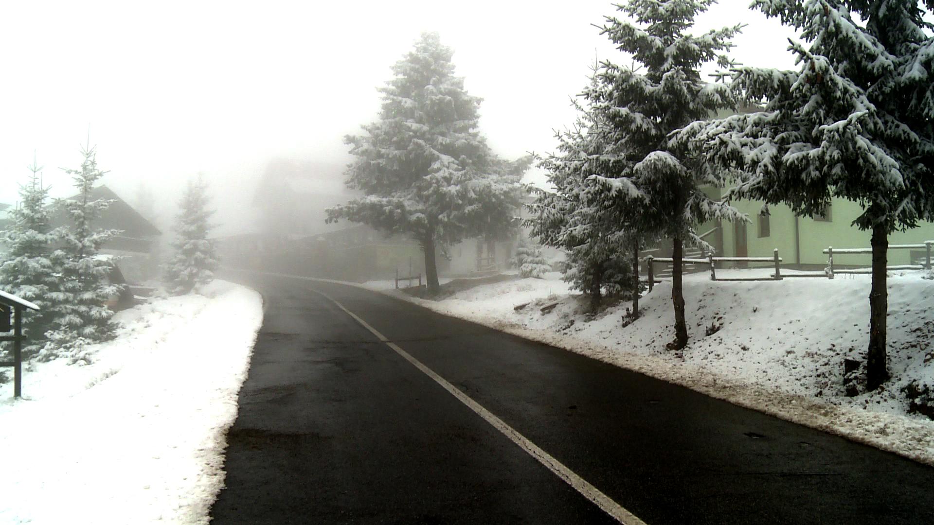 iarna paltinis arena platos (4)