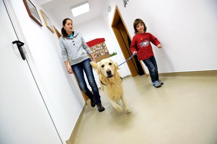 UCOS cani terapia autismo (14)
