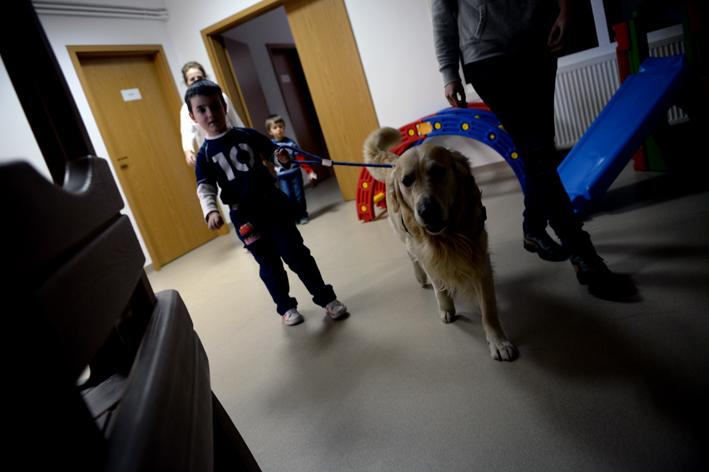 UCOS cani terapia autismo (18)