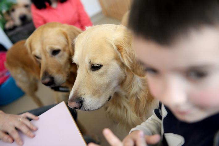 UCOS cani terapia autismo (24)