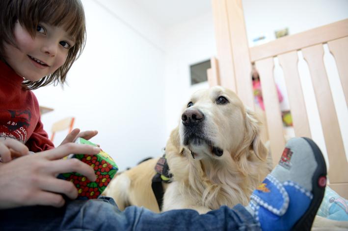 cani terapia autismo UCOS (5)