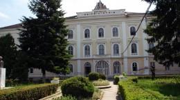 spital psihiatrie _30 000 euro castigati pentru incurajarea voluntariatului