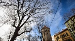 Sibiu parcul cetatii primavara turn aparare (2) (Copy)