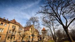 Sibiu parcul cetatii primavara  coposu (5) (Copy)