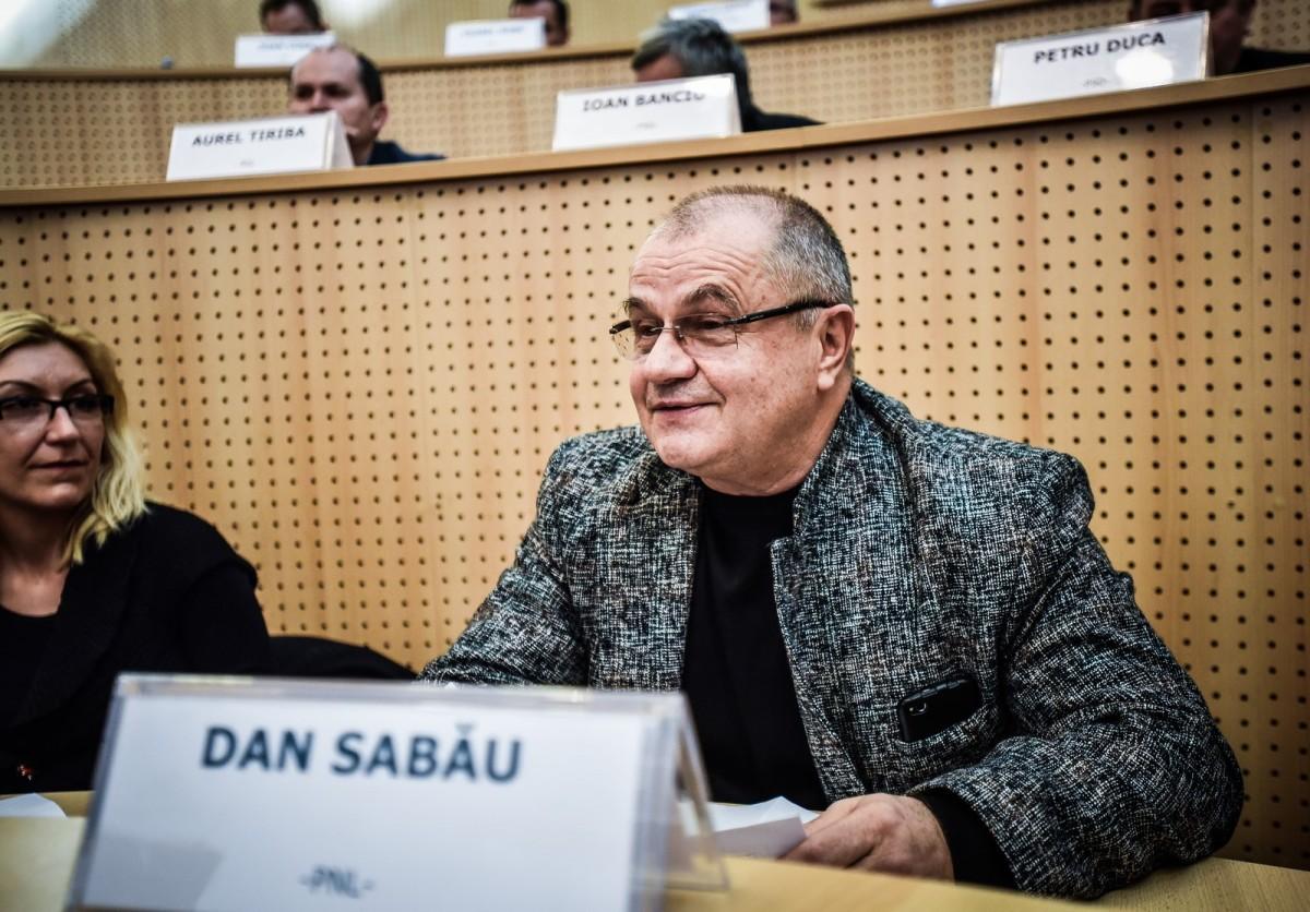 consiliul judetean sabau (12) (Copy)