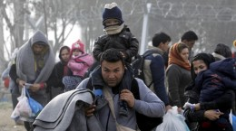 imigranti-frig