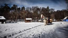 nea sami muzeul satului sanie (21) (Copy)