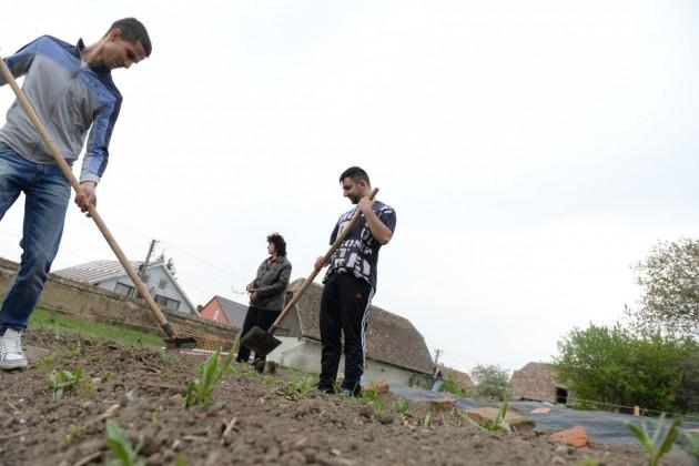 gradina biserica gusterita elevi agricultura (4)