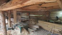 material lemnos perchezitii politie taieri ilegale copaci padure (5)