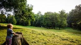 parc sub arini (13)