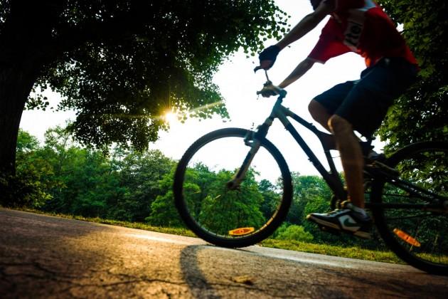 parc sub arini biciclist pista bicicleta (30)