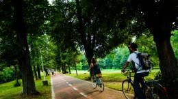 parc sub arini  biciclist pista bicicleta (32)