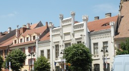 muzeul astra franz binder (4)