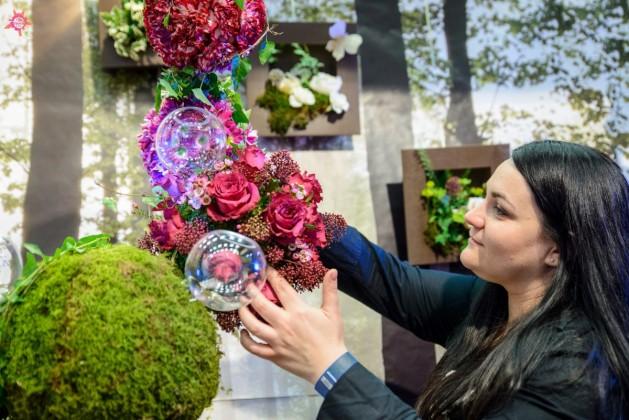 Ioana Mihai Nechifor mici afaceri City Flowers (1)
