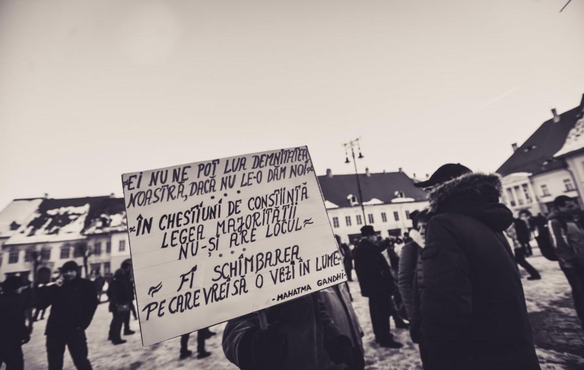 protest anti gratiere 29 ianuarie (3) (Copy)