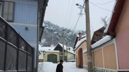 rasinari-iarna-zapada-4