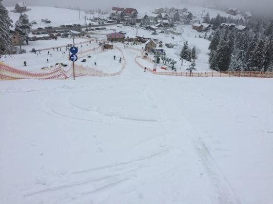 paltinis primavara ceata martie schi arena partie (8)