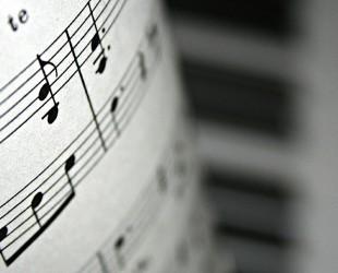 muzica portativ concert