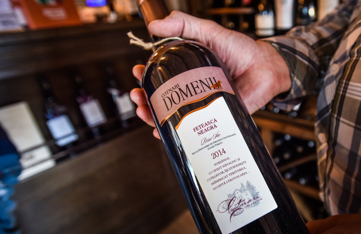 wine not vin vinuri (25)