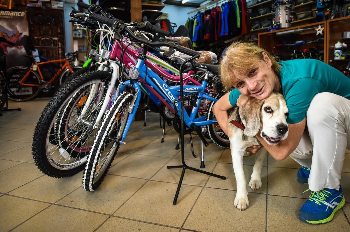 explorer biciclete (18)