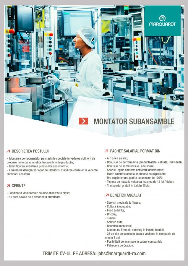 montator subansamble