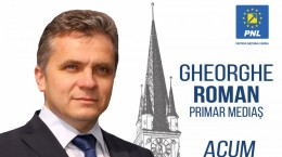 afis electoral gheorghe roman medias