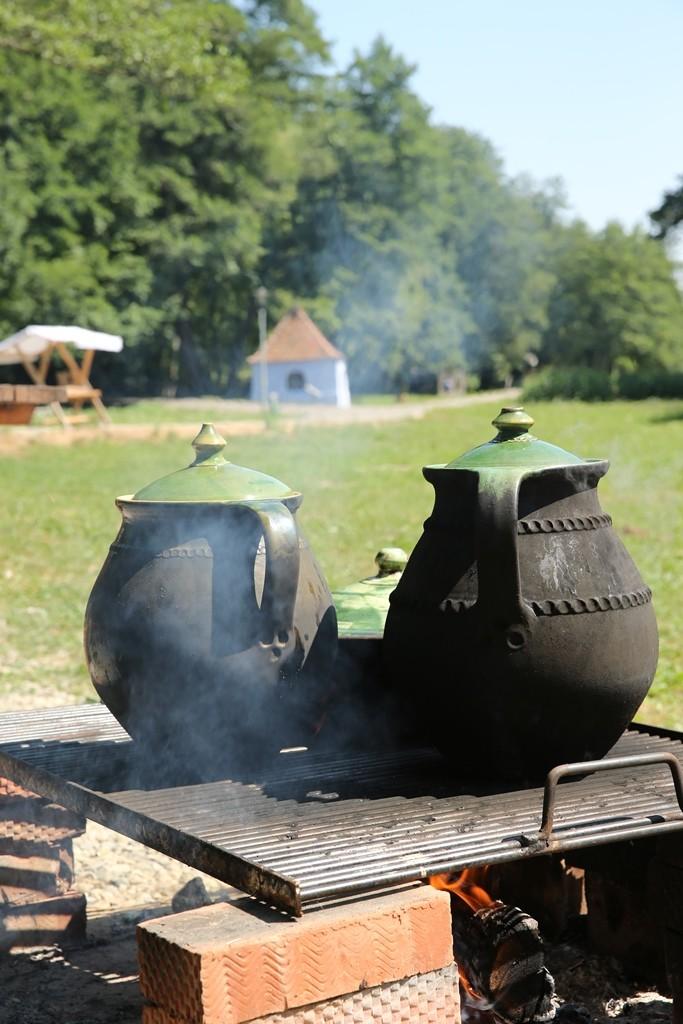 targul olarilor muzeul astra (2)