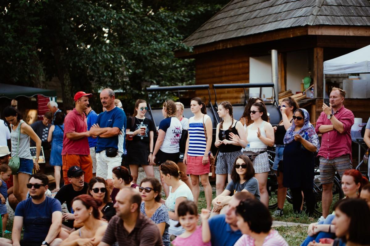 bere muzeul astra festivalul de bere artizanala (2)