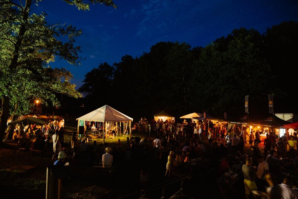 bere muzeul astra festivalul de bere artizanala (3)