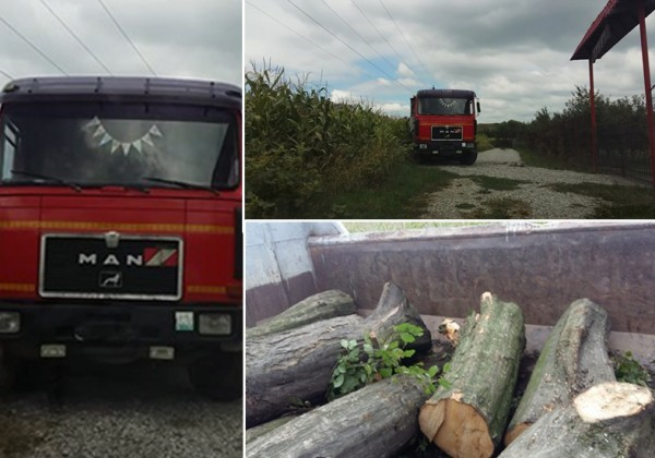 camion lemne slimnic
