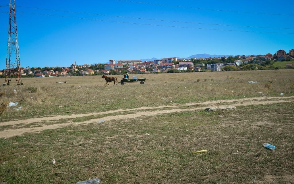 cartier dallas romi turnisor (1)