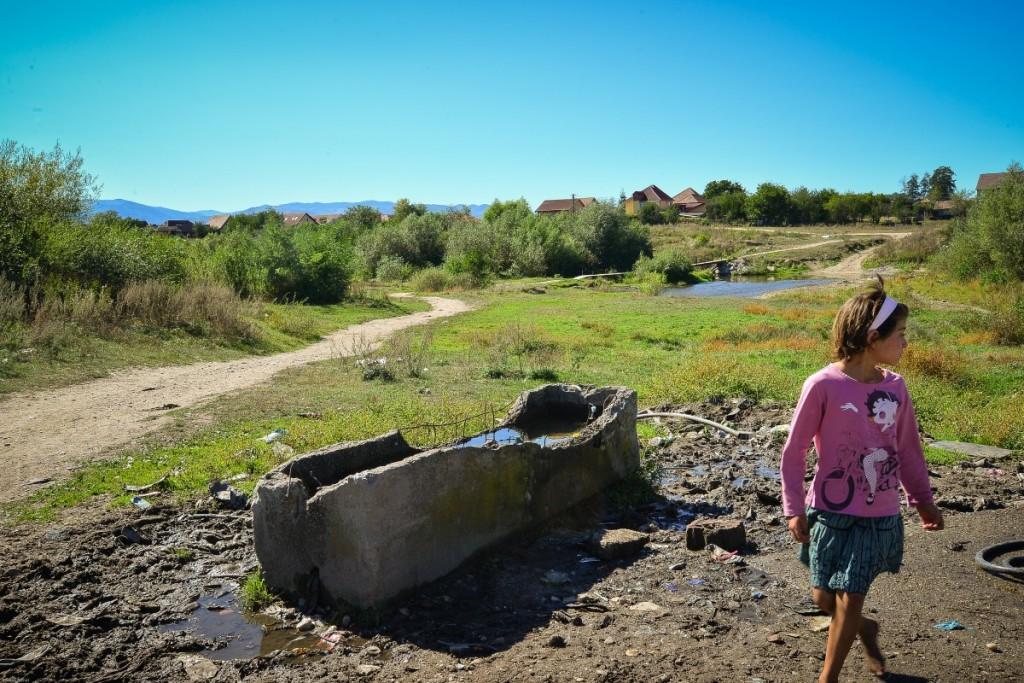 cartier dallas romi turnisor (16)