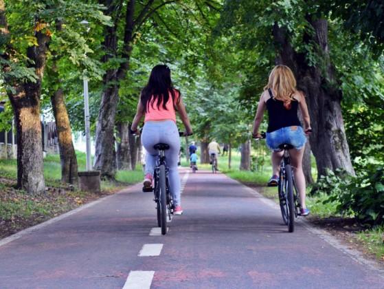 micile afaceri biciclete bicicleta