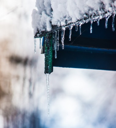 iarna turturi gheata frig