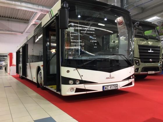maz autobuze