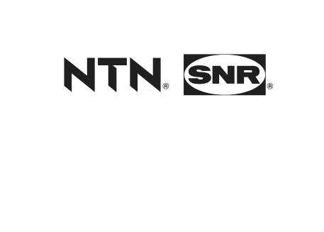 logo NTN-SNR_negru