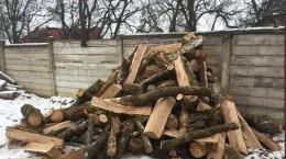 lemne padure scutul padurii
