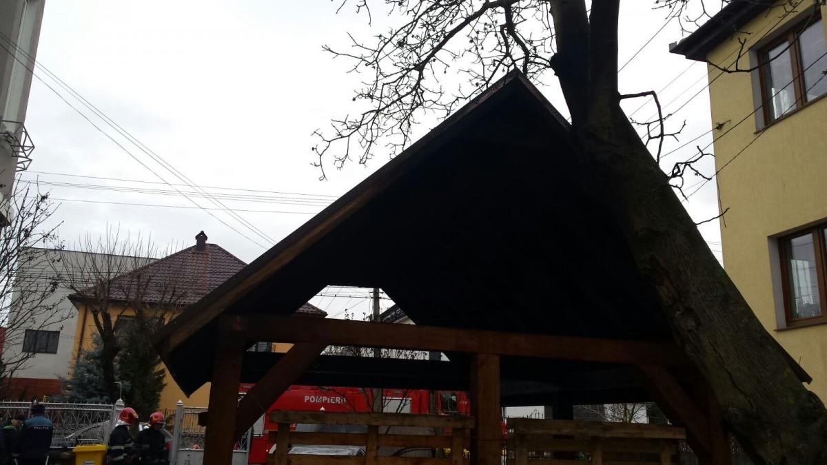 acoperis garaj ars