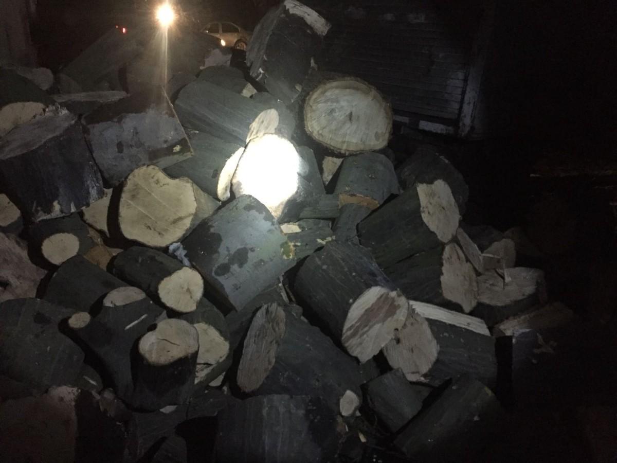lemne 3
