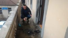 psd-Cluj-benzina-protest-vandalizat-3-e1519383959304