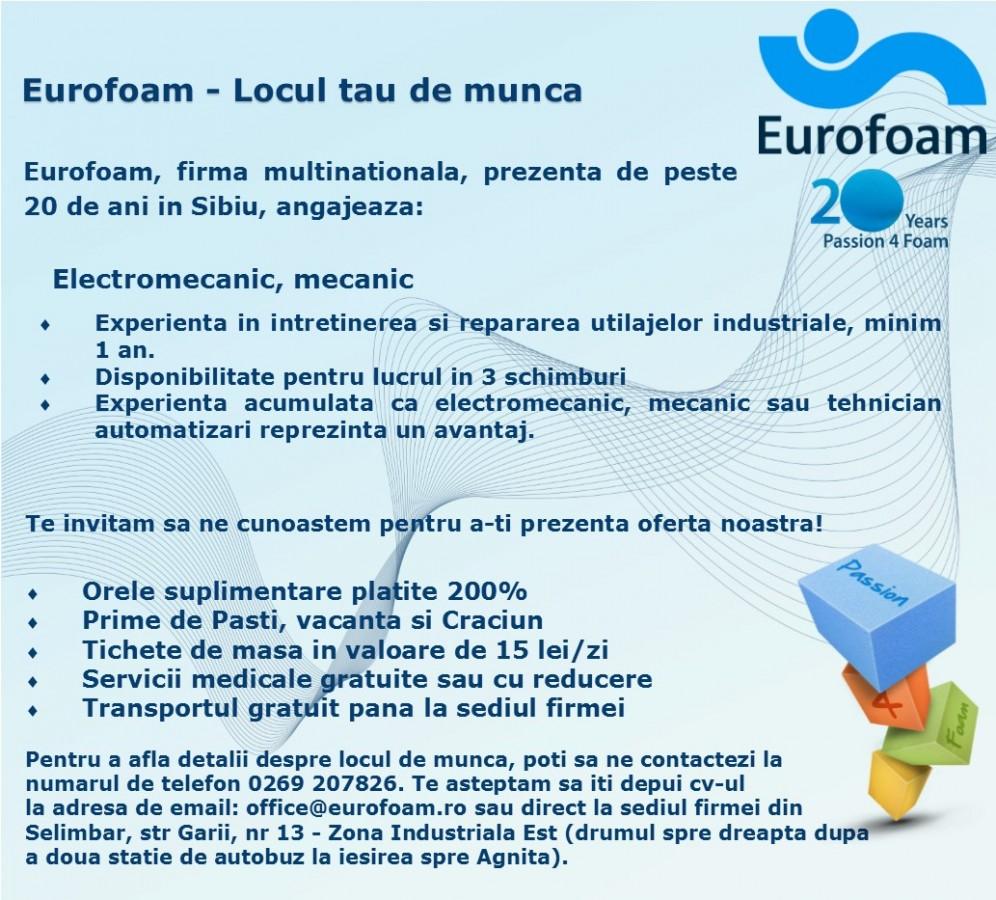 ElectromecanicMEcanic-9