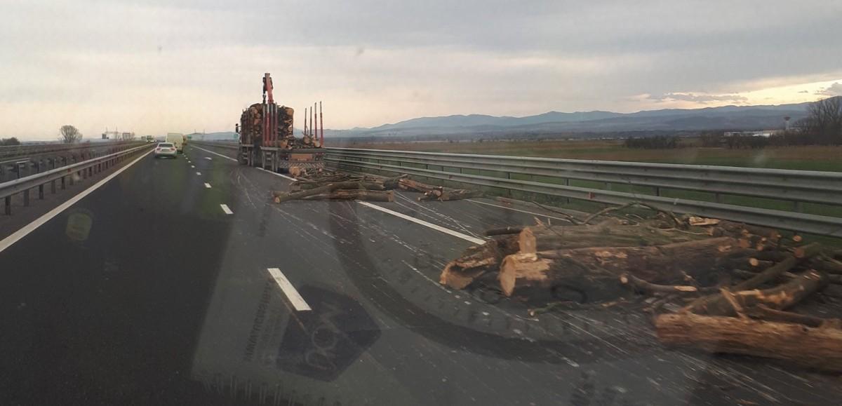 lemne autostrada 2