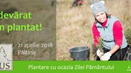 plantare_21aprilie_website_930x421