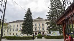 protest spital psihiatrie (17)